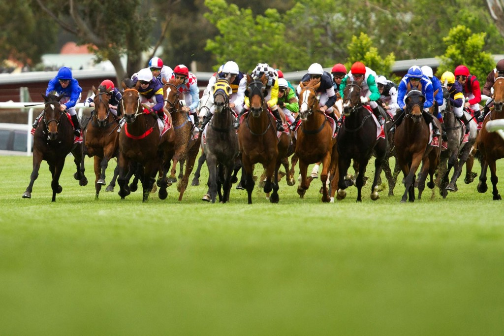 MELBOURNE, AUSTRALIA - NOVEMBER 01:  The field turns into the home straight during the running of the Melbourne Cup at Flemington Racecourse on November 1, 2011 in Melbourne, Australia.  (Photo by John Donegan/Getty Images)