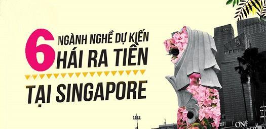 8-nganh-nghe-du-kien-hai-ra-tien-tai-singapore